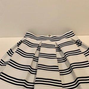 Pleated Stiff Skirt